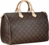Louis Vuitton Monogram Canvas Speedy